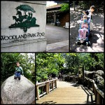 PEW: The Woodland Park Zoo