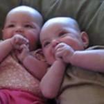Adorable Sneezers