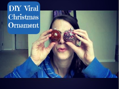 Post image for Vlogging Workshop: DIY Viral Ornament