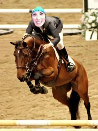 equestrian horse jumper