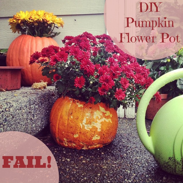 pumpkin flower pot fail