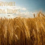30 November Vlogging Prompts