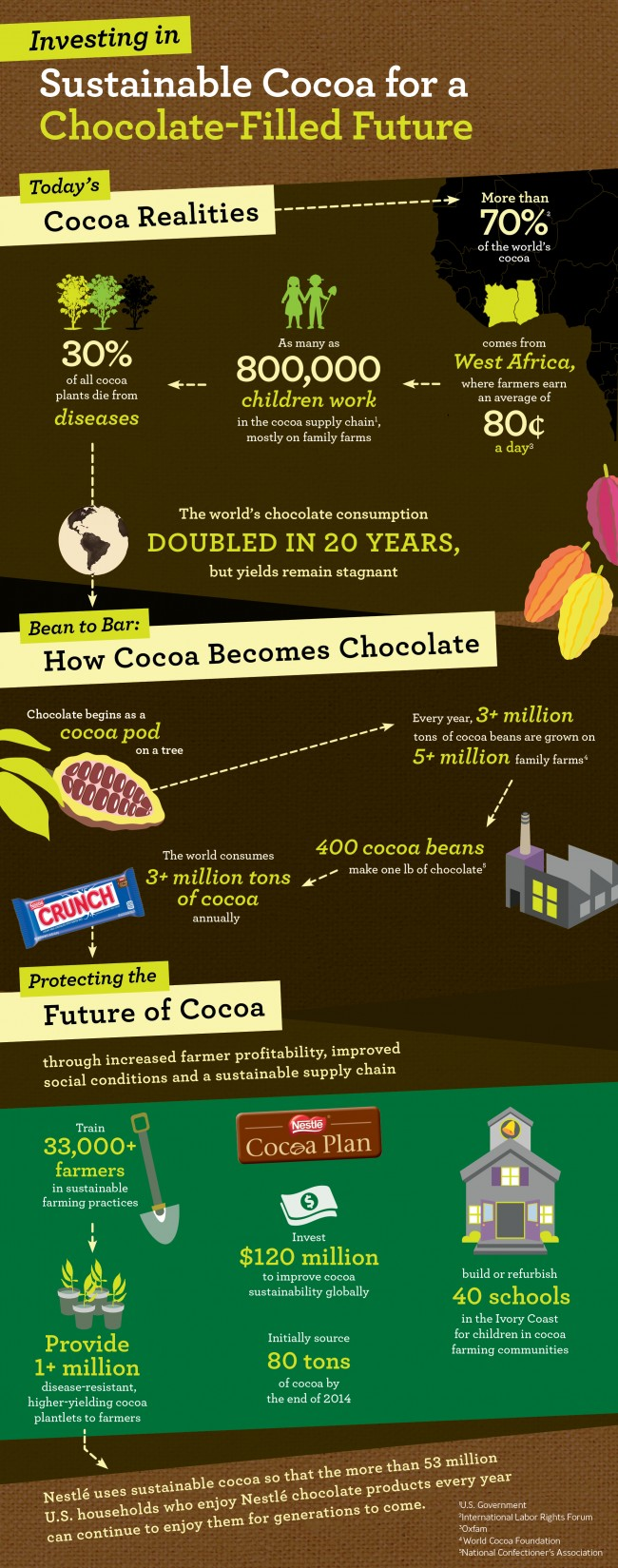 Nestle Cocoa Plan Infographic