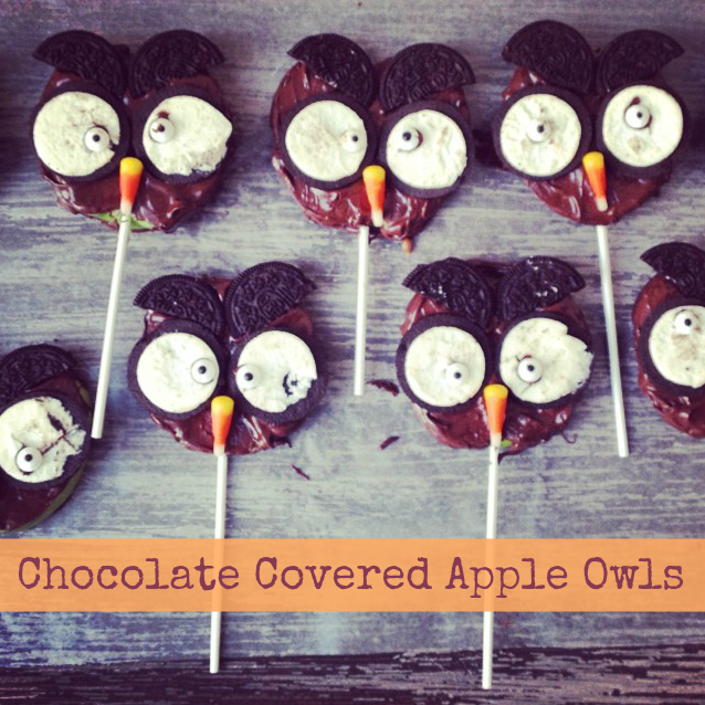 chocolate covered apple owls2