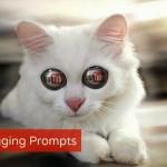 Vlogging Prompts For 11.12