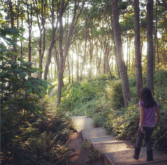 hiking at discovery park