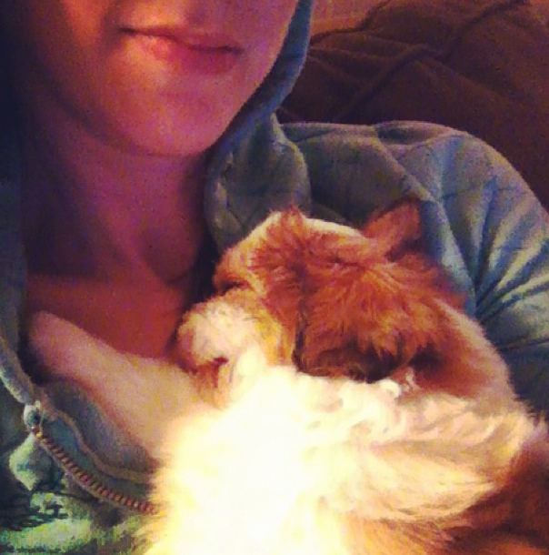 sandy snuggles