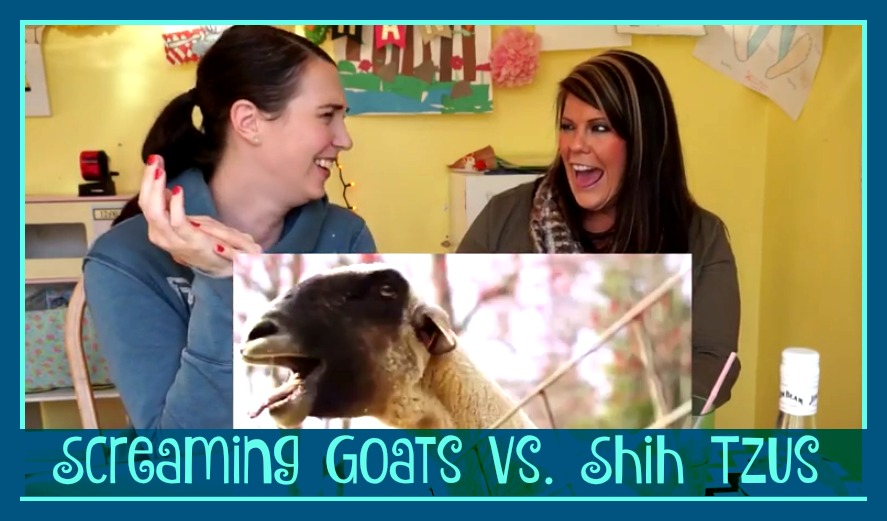 screaming goats