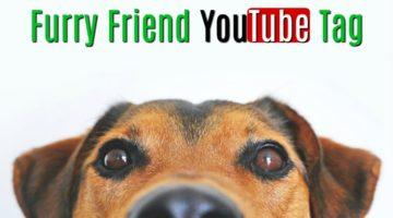 Furry Friend YouTube Tag